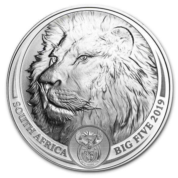 African Big Five Lion
