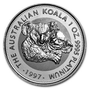 Koala platina